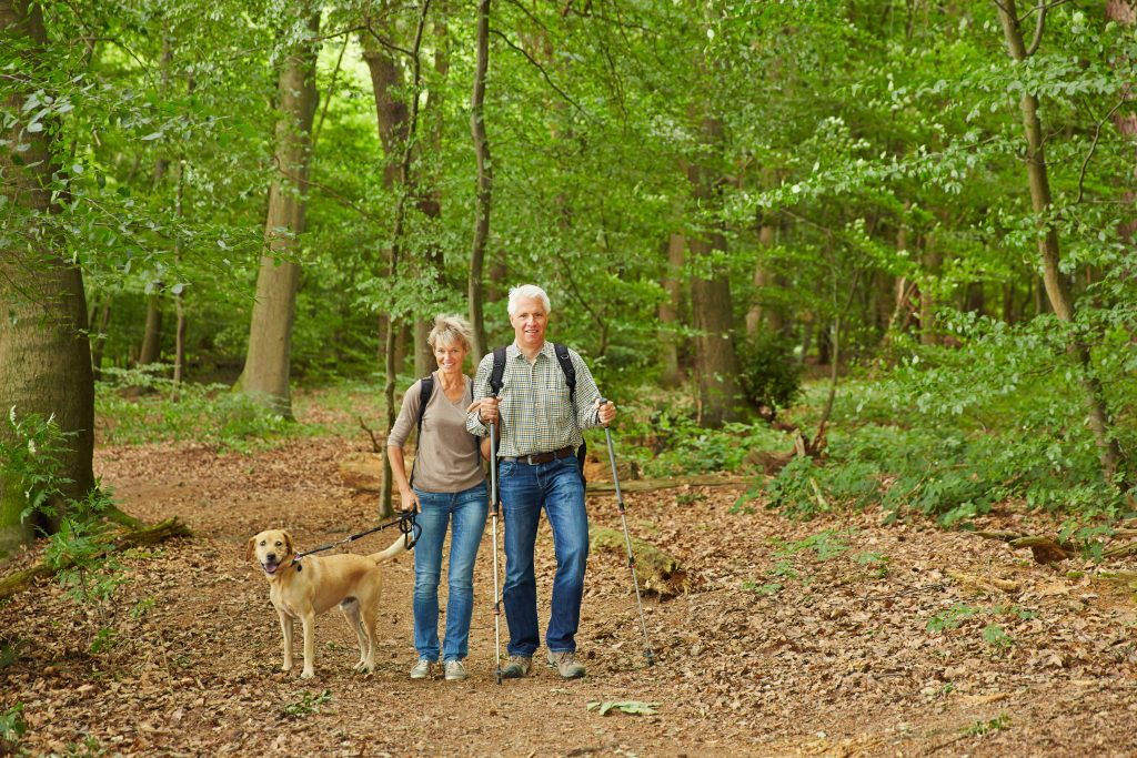 Couple Dog Walking for West Hartford Blog
