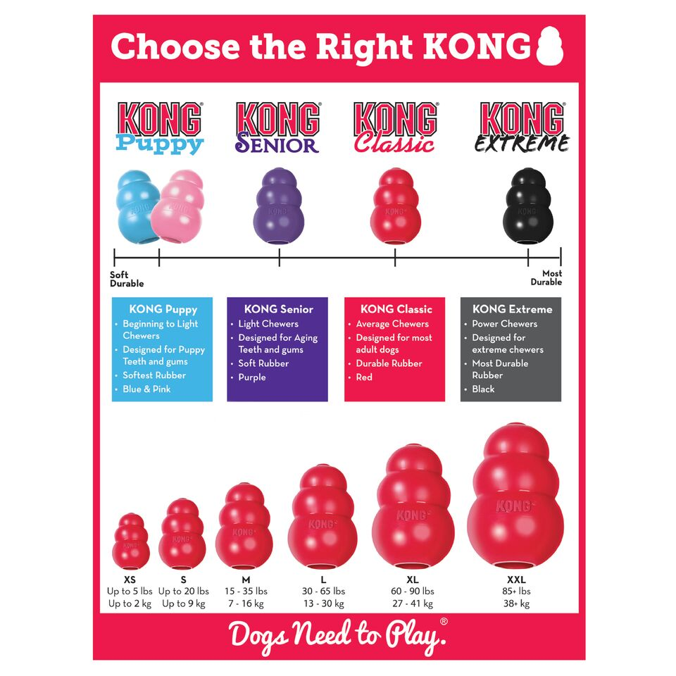 Choose The Right Kong For Your Puppy
